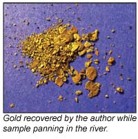 Gold recovered from sample panning